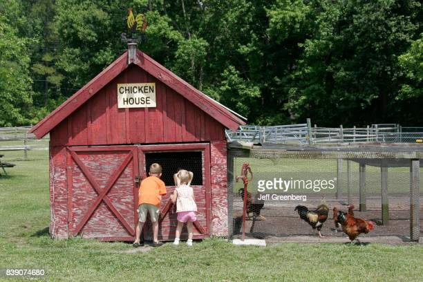 Children looking in a chicken house at the petting zoo at Chesapeake Campground and Cottages