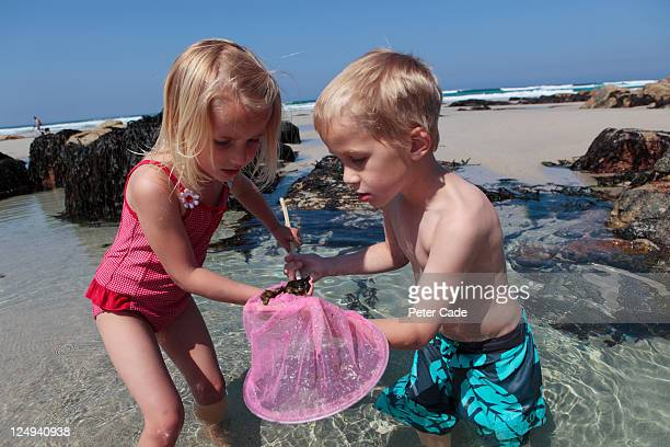 children looking in fishing net on beach