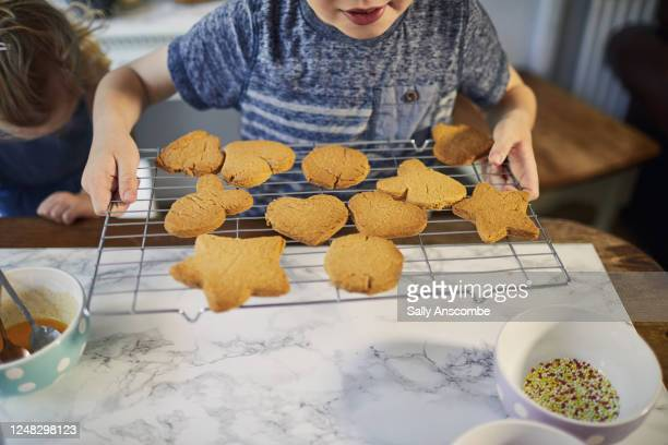 children making biscuits together in the kitchen - children only stock pictures, royalty-free photos & images