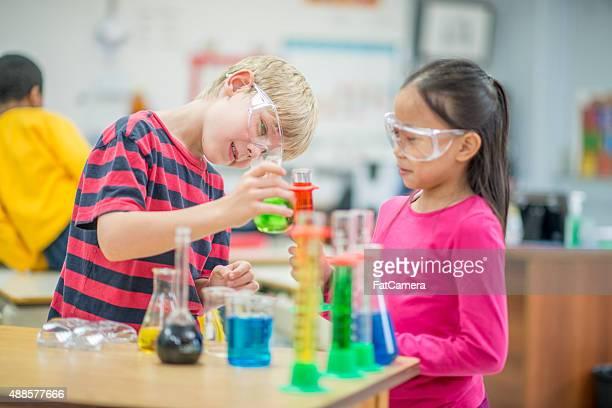 Children Observing in Biology Class