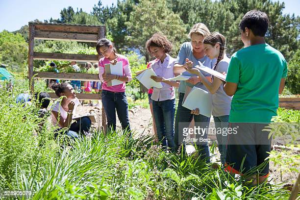 Children on a school field trip in nature