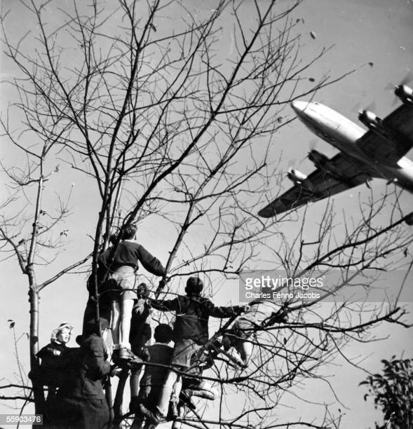 Children on a tree near the Brandenburg Gate watch a US fourengined cargo aeroplane arrive during the Berlin Airlift 24th June 1948 Original...