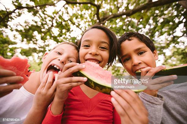 children on a wooden fence eating watermelon on summer day - children only stock pictures, royalty-free photos & images