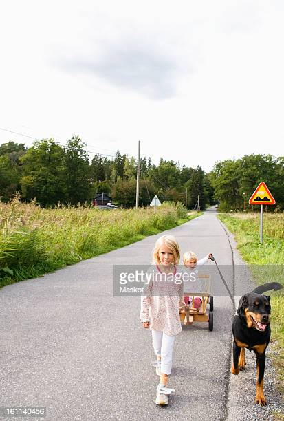 children outside walking the dog - guide dog photos et images de collection
