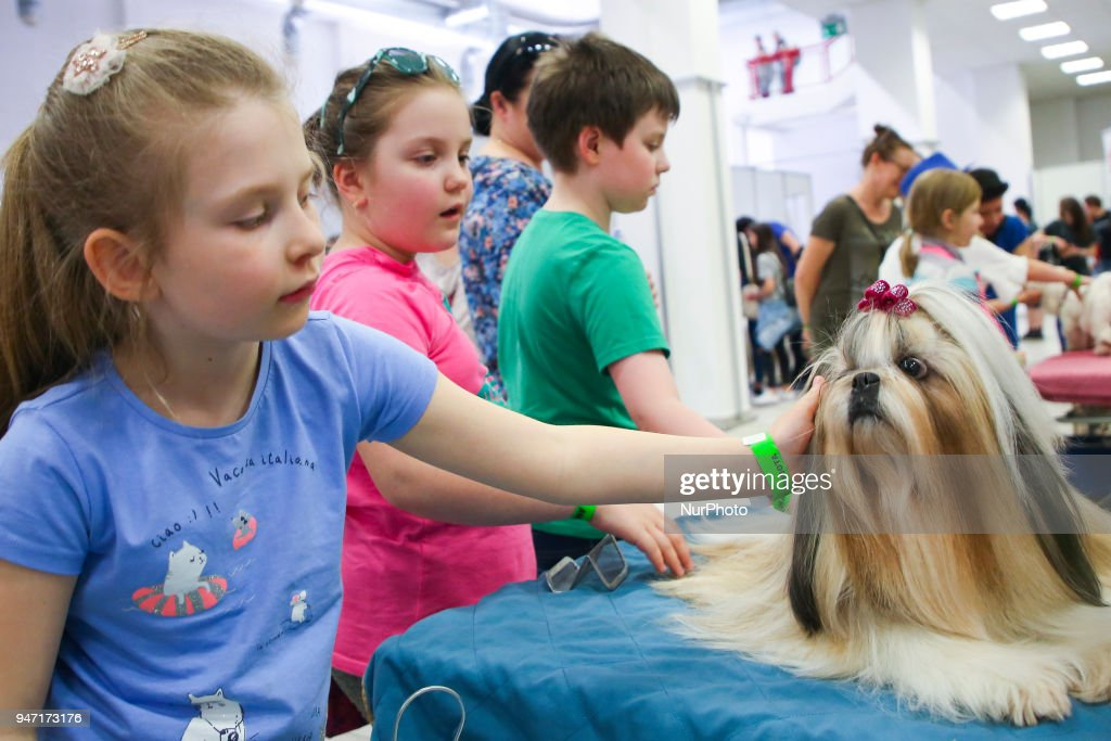Children pat a dog during the 'Animal Show 2018' trade fair and exhibition in Krakow, Poland on 14 April, 2018.
