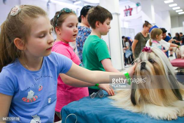 Children pat a dog during the 'Animal Show 2018' trade fair and exhibition in Krakow Poland on 14 April 2018