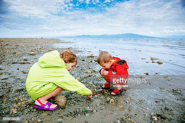 children paying at rathrevor beach in vancouver island - vancouver island stockfoto's en -beelden