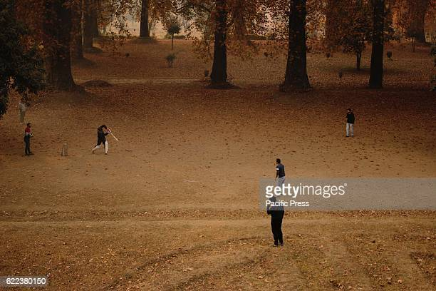 Children play cricket in the midst of the chinar trees at the onset of autumn in Srinagar Indian controlled Kashmir Tree leaves are changing colors...