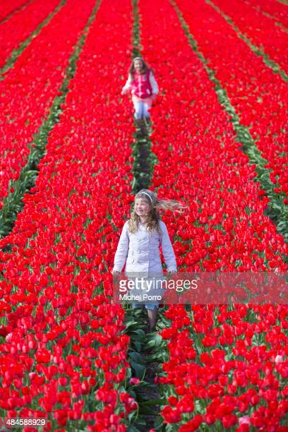 Children play in the flower fields on April 13 2014 in Noordwijkerhout Netherlands The fields are in bloom early this year due to the very mild...