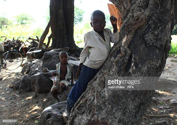 Children play on a tree on November 07 2009 in Bauchi Nigeria