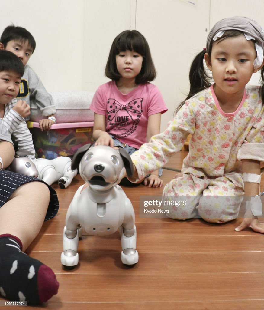 Children play with Sony Corp 's Aibo robot dogs at the