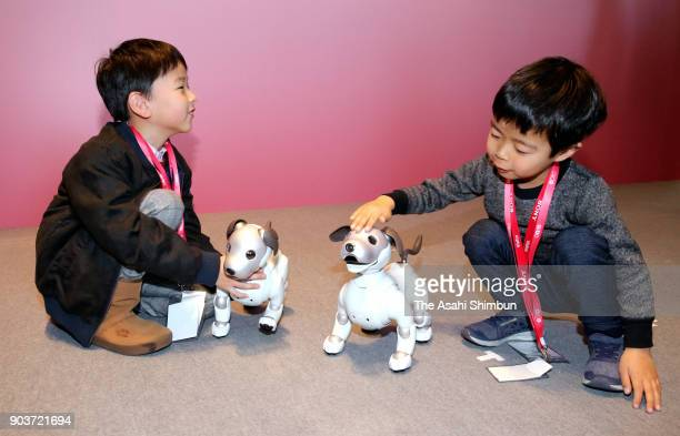 Children play with Sony's new Aibo robot dog during its launching ceremony on January 11 2018 in Tokyo Japan The muchloved electronic pup has been...