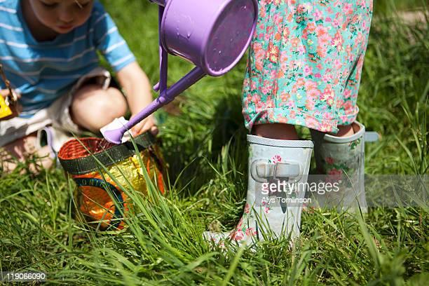children playing gardening outdoors - newpremiumuk stock pictures, royalty-free photos & images