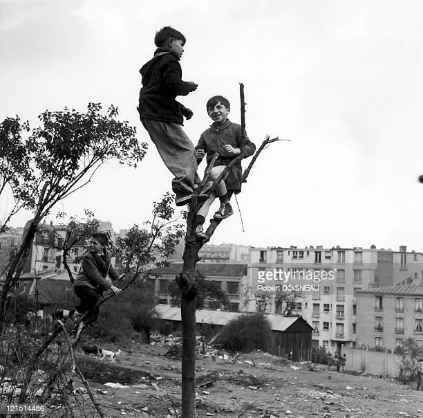 Children Playing In A Waste Ground
