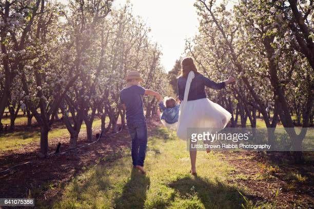 3 Children Playing in An Orchard