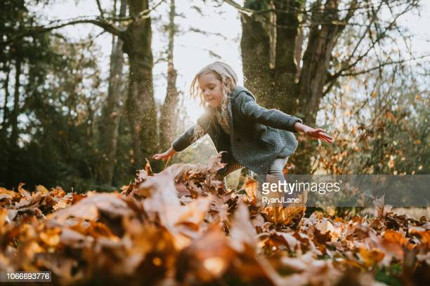 children playing in autumn leaves - picking up stock photos and pictures