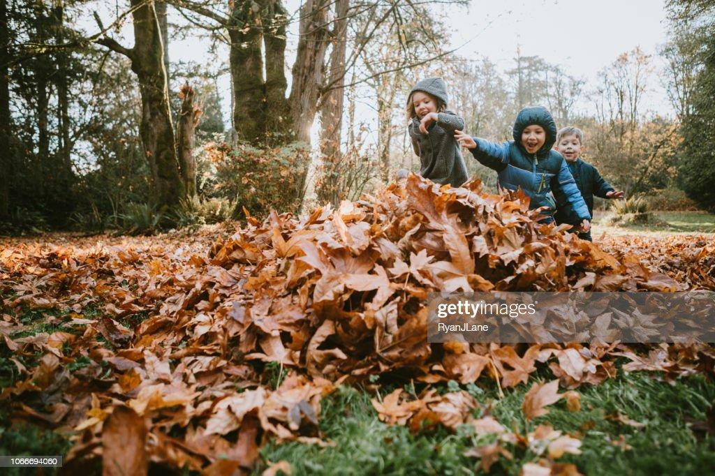 Kinderen spelen In de herfstbladeren : Stockfoto
