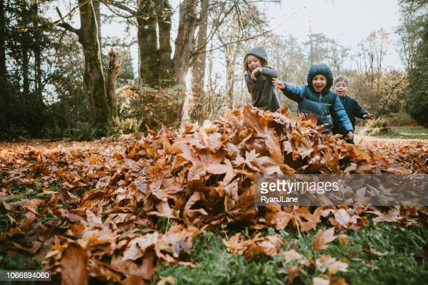 children playing in autumn leaves - giochi per bambini foto e immagini stock