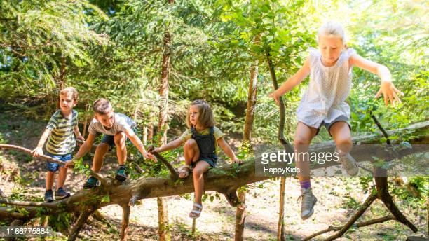 niños jugando en el bosque - linda rama fotografías e imágenes de stock