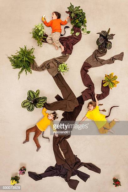 Children playing monkeys in tree