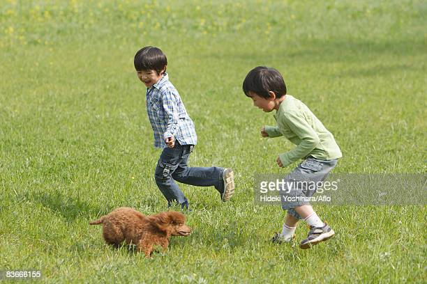 children playing with a cute puppy in park - 日本人のみ ストックフォトと画像