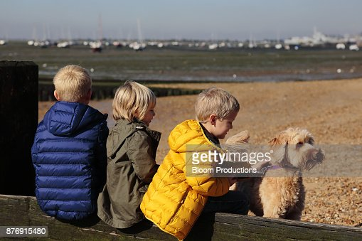 Children playing with a dog at the beach