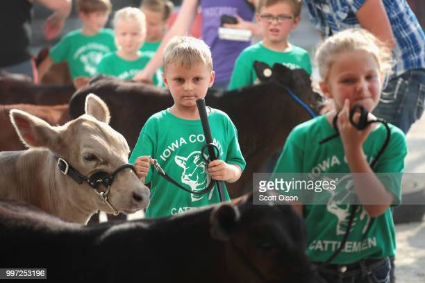 Children prepare to show calves at the Iowa County Fair on July 12, 2018 in Marengo, Iowa. The fair, like many in counties throughout the Midwest,...