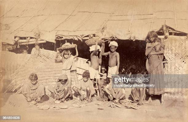 Children preparing prickly pear as food for cattle in Madras India 1876 Madras Famine 18761878