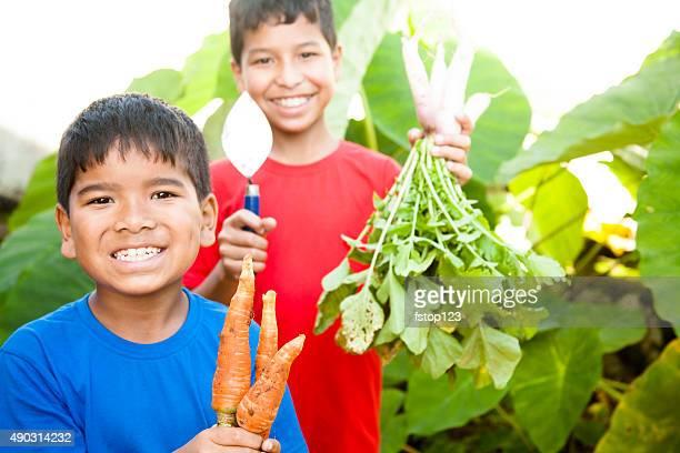 Children proudly harvest vegetables from community garden.