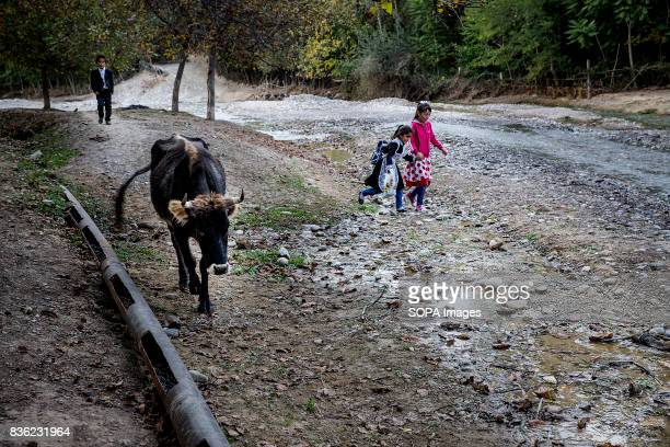 Children returning from school have to cross a river which is also the source of household water in Beshkent Kyrgyzstan The water is vulnerable to...