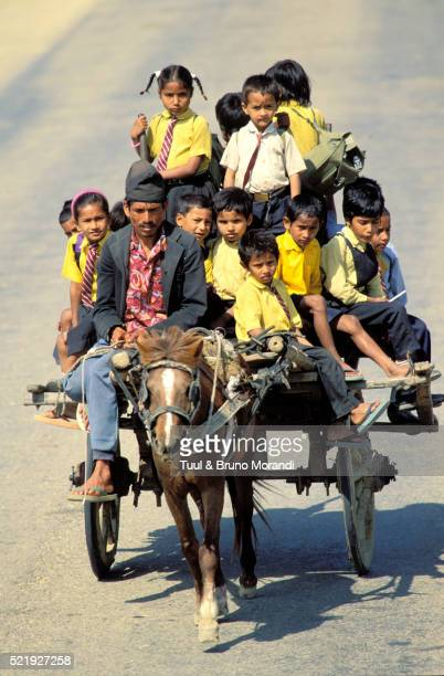 children returning from school on a horse taxi in nepal - terai stock pictures, royalty-free photos & images
