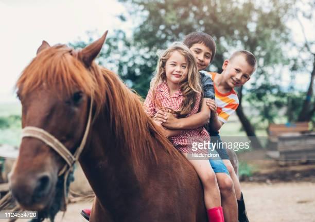 crianças, montando um cavalo - montar - fotografias e filmes do acervo