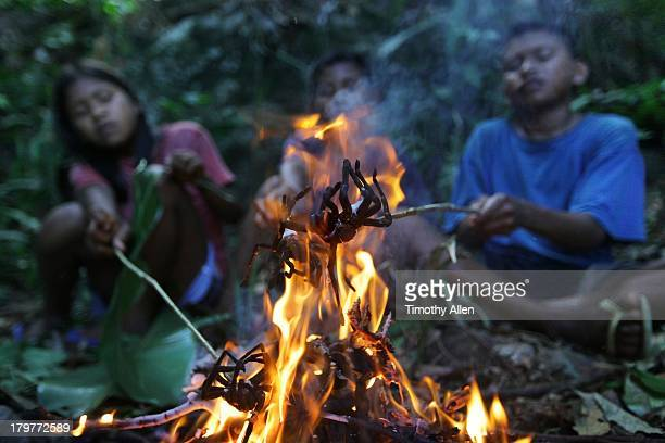 Children roast barbecue Goliath tarantula spiders