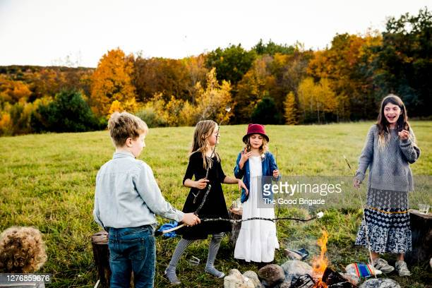 children roasting marshmallows around campfire - innocence stock pictures, royalty-free photos & images