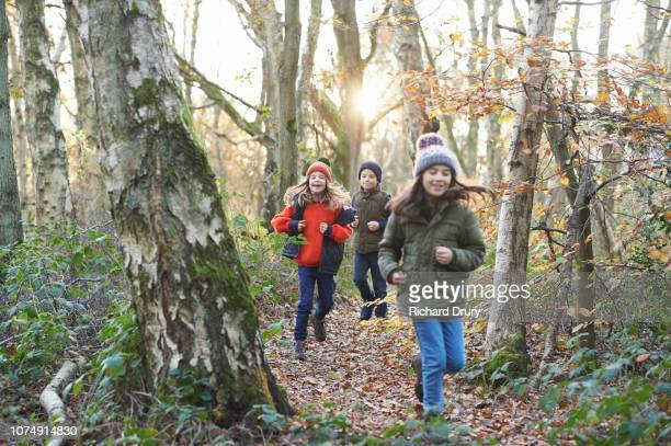 children running along a path in autumnal woodland - lane sisters stock photos and pictures