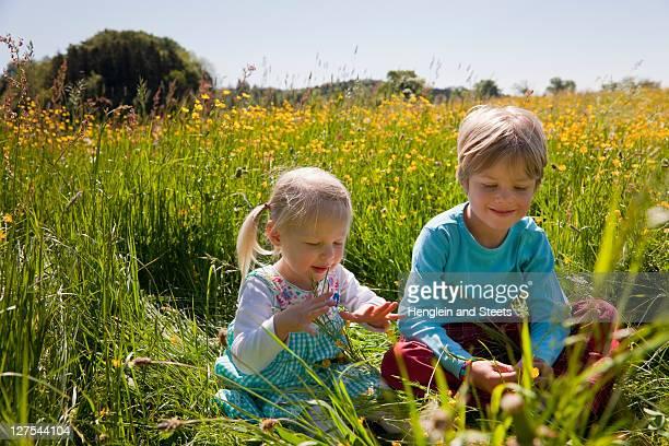 Children sitting in field of flowers