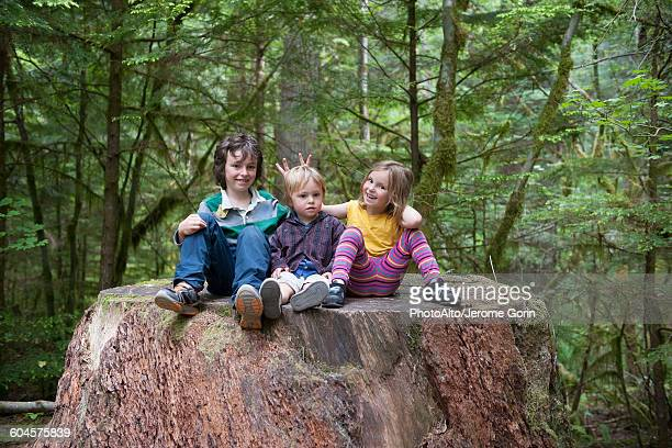 Children sitting together on large tree stump in forest
