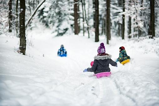 Children sledding in winter forest. 623189580