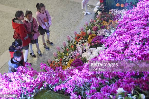 Children visit an exhibition of Kimilsungia a purple flower of the orchid family named after North Korea's founder Kim Il Sung in Pyongyang on March...