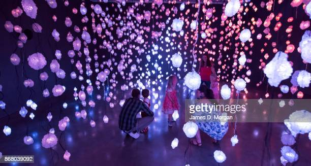 Children visit 'Pixel Forest' at the opening of Pipilotti Rist's sensory exhibition 'Sip my Ocean' at the Museum of Contemporary Art on October 30...