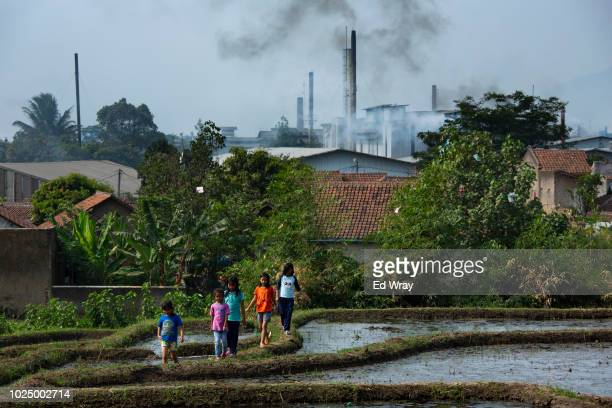 Children walk through a rice paddy overlooking the dozens of textile mills which have been using the Citarum River to dump their waste water on...