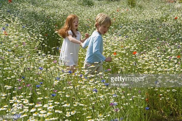 Kinder, die zu Fuß in Feld mit Blumen
