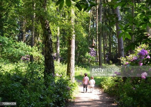 Children Walking On Footpath Amidst Trees