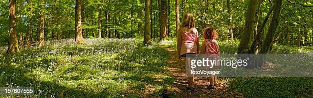 Children walking through idyllic wild forest dappled sunlight bluebells panorama