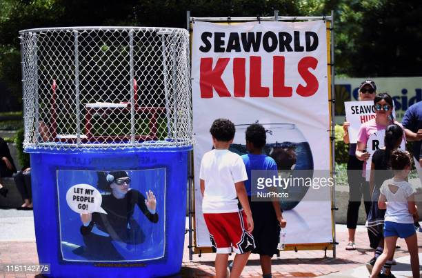 Children watch as A PETA member wearing an orca suit swims in a small tank of water urging passersby not to buy tickets to SeaWorld on June 20, 2019...