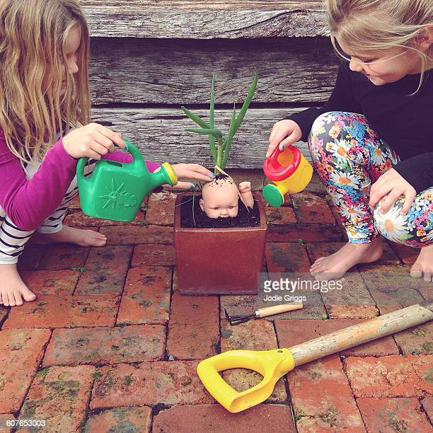children watering a baby doll growing in a pot - jardinier humour photos et images de collection