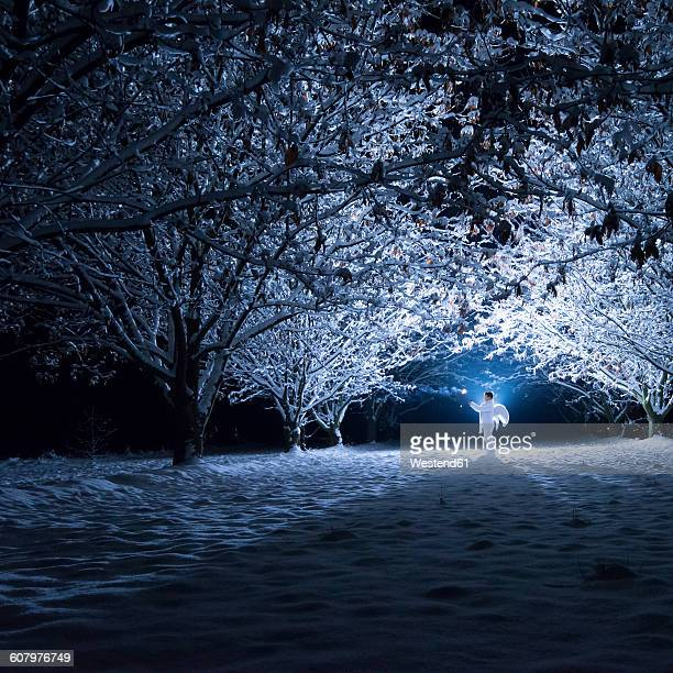 children with angel wings standing under snow-covered trees in the darkness - snow angel fotografías e imágenes de stock