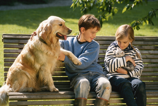 Children (6-9) with cat and dog sitting on bench - gettyimageskorea