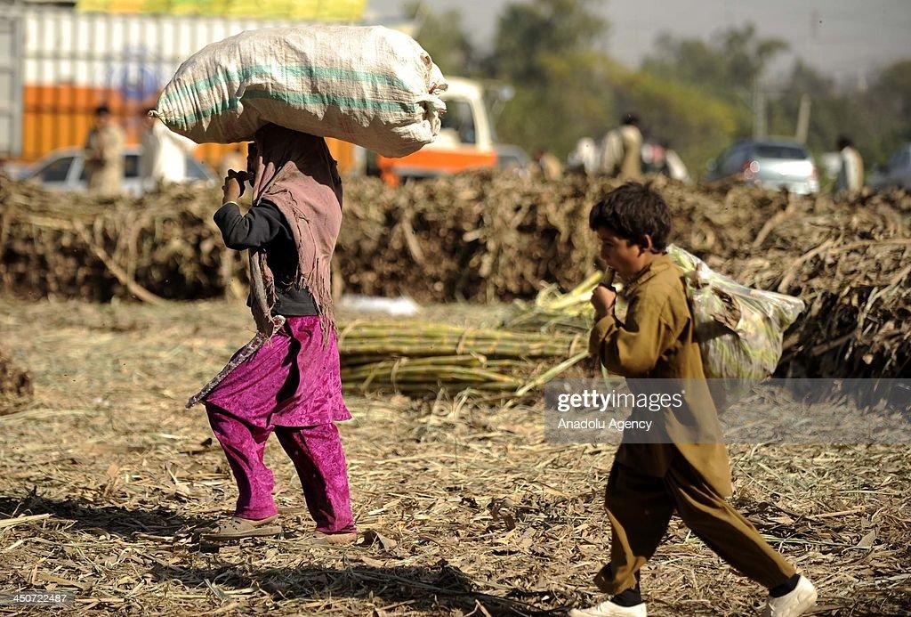 Pakistani children in Universal Children's Day : News Photo
