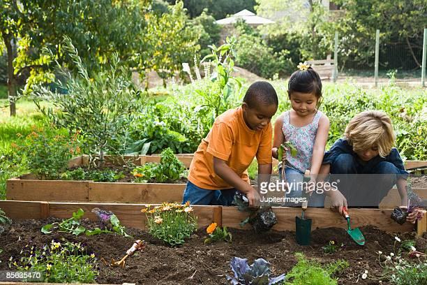 Children working in garden